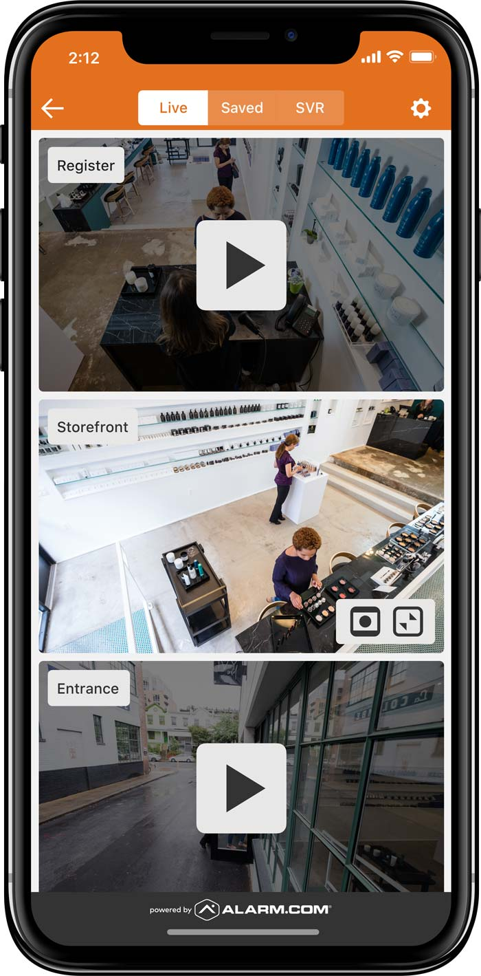 business-security-security-cameras-image-01